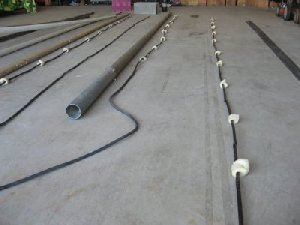 Collinear ant building